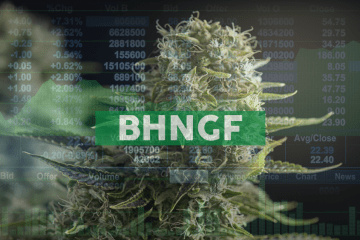 Bhang Inc. Provides Management Update and Releases Letter to Shareholders
