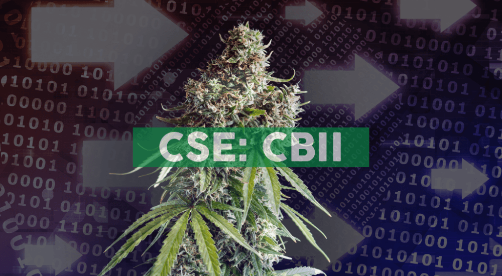CB2 Insights Announces Collaboration with FCM Global to Support Medical Cannabis R&D in Colombia