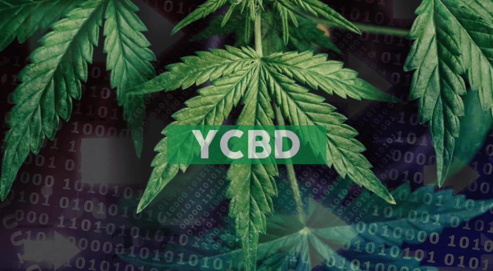 CbdMD Reports Fourth Quarter Net Sales of $9.54 Million