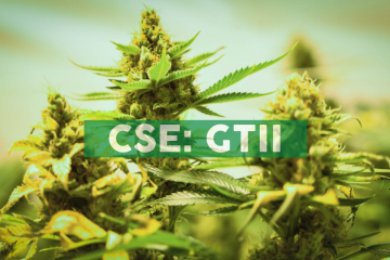Todd Swanson Announces Late Filing of Early Warning Report Related to CLS Holdings USA, Inc.