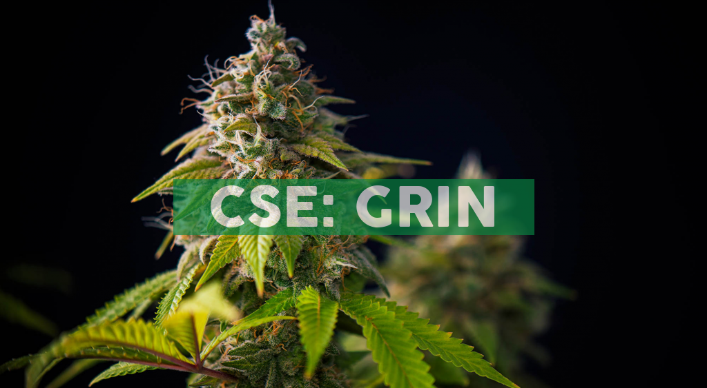 Grown Rogue Wins Highest Honors at Cultivation Competition and Achieves Record Breaking THC Potency