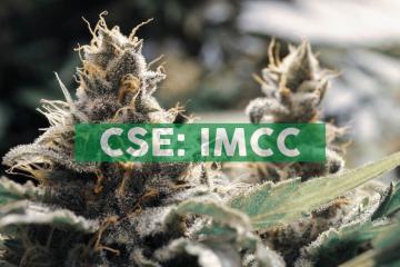 IM Cannabis Corp. Provides Israeli Market Update