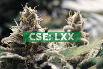 Combining Lexaria's DehydraTECHTM with Nanotech Delivers Increased Quantities of CBD into Brain Tissue