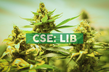 Liberty Leaf's Subsidiary Just Kush Announces Receipt of Cultivation, Processing and Medical Sales Licenses from Health Canada and Provides Corporate Update
