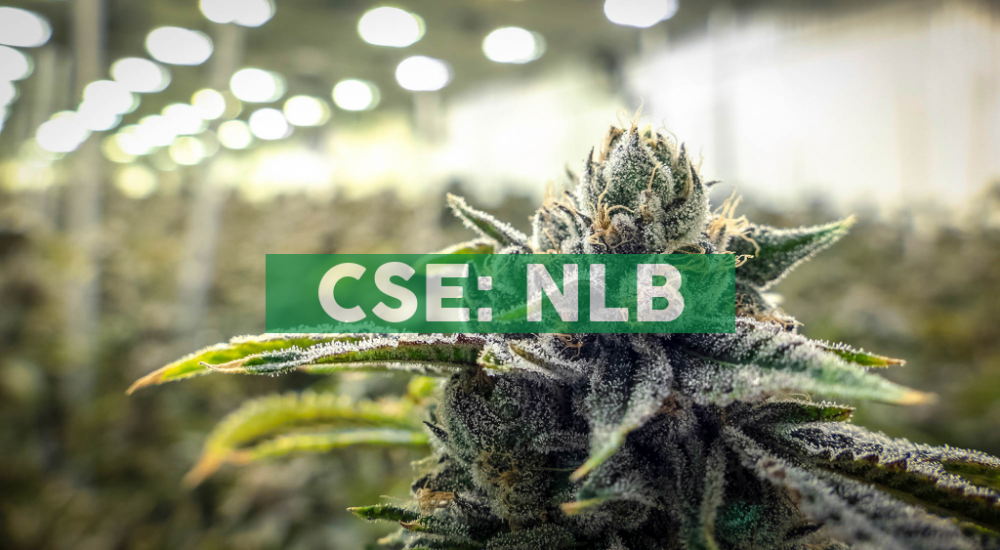 NewLeaf Brands' Wholly Owned Subsidiaries, TeaLief Brand, LLC, Drink Fresh CBD, LLC & ReLyfe Brand, LLC Have Officially Launched on Social Media Platform Herbfluence, With Over 20 Million+ Social Media Followers Reach