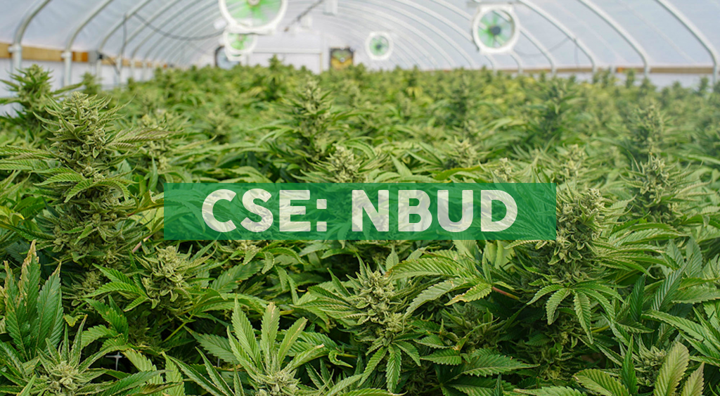 NORTHBUD Amends Licence Application to Add 500K SQ. FT. of Outdoor Cultivation Area and Provides a Corporate Update