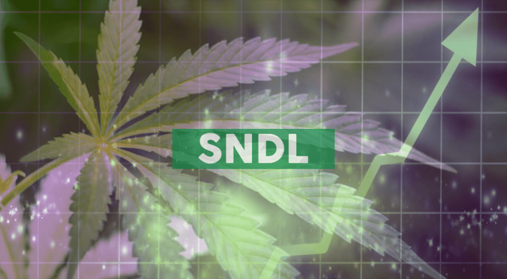 Sundial Announces 2020 Launch of Medical Cannabis Marketplace