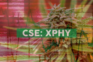 XPhyto Therapeutics Signs Term Sheet for German Cannabis Distribution