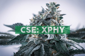XPhyto Therapeutics Engages Global Cannabis Expert for German Operations