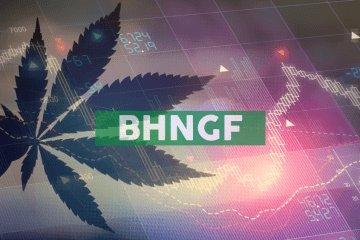 Bhang Inc. Announces Third Quarter 2019 Financial Results