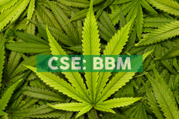Blueberries Receives Approval to Sell Five CBD Wellness Products in Colombia and Internationally from Colombian Food and Drug Regulator