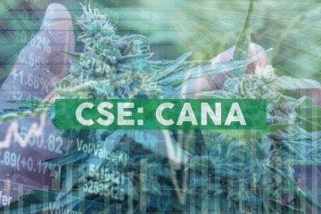 CannAmerica Signs LOI to Enter the European CBD Market