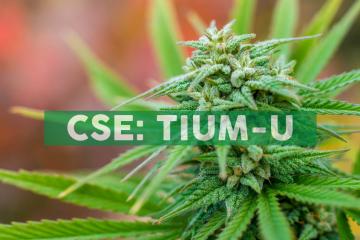 Cansortium Announces Opening of its 18th Fluent™ Medical Marijuana Dispensary in Florida