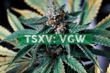 Valens GroWorks Corp. rebrands to 'The Valens Company' demonstrating leadership in both extraction and commercializing innovative, cannabinoid-based products