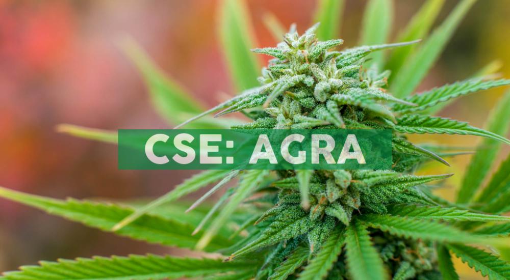 Agraflora Organics News
