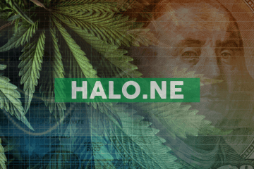 Halo Provides Update to Operations in Lesotho, Africa