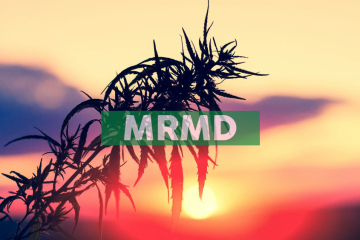 MariMed Shares in Successful Launch of Adult-Use Cannabis as Illinois Legal Sales Take Off