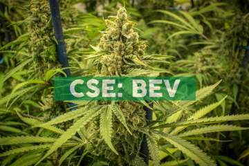 BevCanna Signs Exclusive Agreement with Clearwater Canngrow
