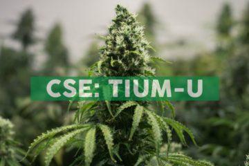 Cansortium Announces Opening of Its 19th Fluent™ Medical Marijuana Dispensary in Florida