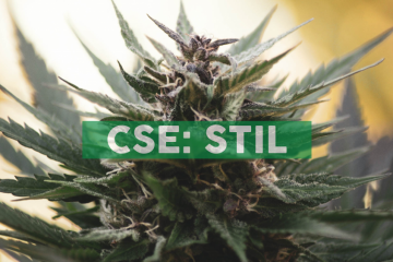 Stillcanna Offers CBD White Label Services in Europe