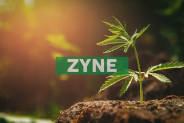 Zynerba Pharmaceuticals Receives New U.S. Patent for Treatment of Autism Spectrum Disorder with Purified Cannabidiol