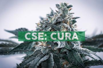 Curaleaf CEO Joe Lusardi Discusses Florida Marijuana Market Strategy