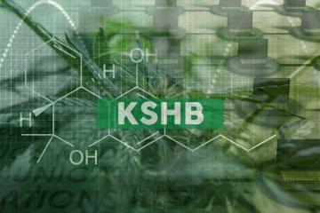 KushCo Holdings, Inc. Prices $16 Million Registered Direct Offering