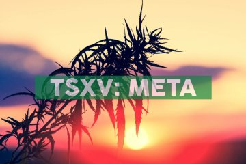 Shareholders Approve Name Change to Meta Growth Corp.