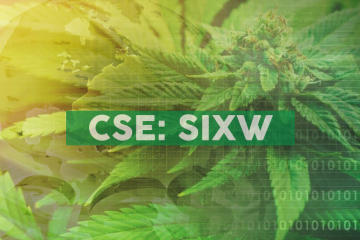 Sixth Wave Announces Successful Pilot Scale Testing of Affinity(TM) CBD Platform