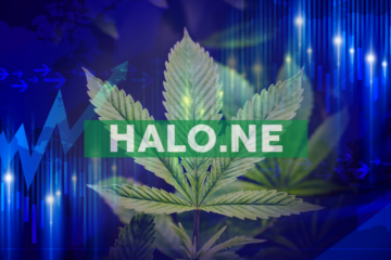 Halo Announces the Agreement to Acquire a Dispensary Application Software Company and Concurrent Private Placement
