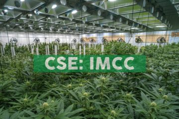 IM Cannabis Bolsters Supply of Medical Cannabis in Israel under IMC Brand due to Definitive Supply Agreement between Focus and Intelicanna