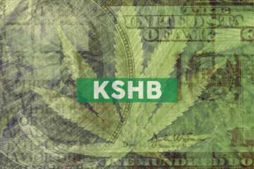 KushCo Holdings Announces Preliminary Fiscal Second Quarter 2020 Revenue Results and Provides Corporate Updates