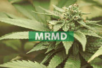 MariMed Begins Development of its 3rd Dispensary in Illinois