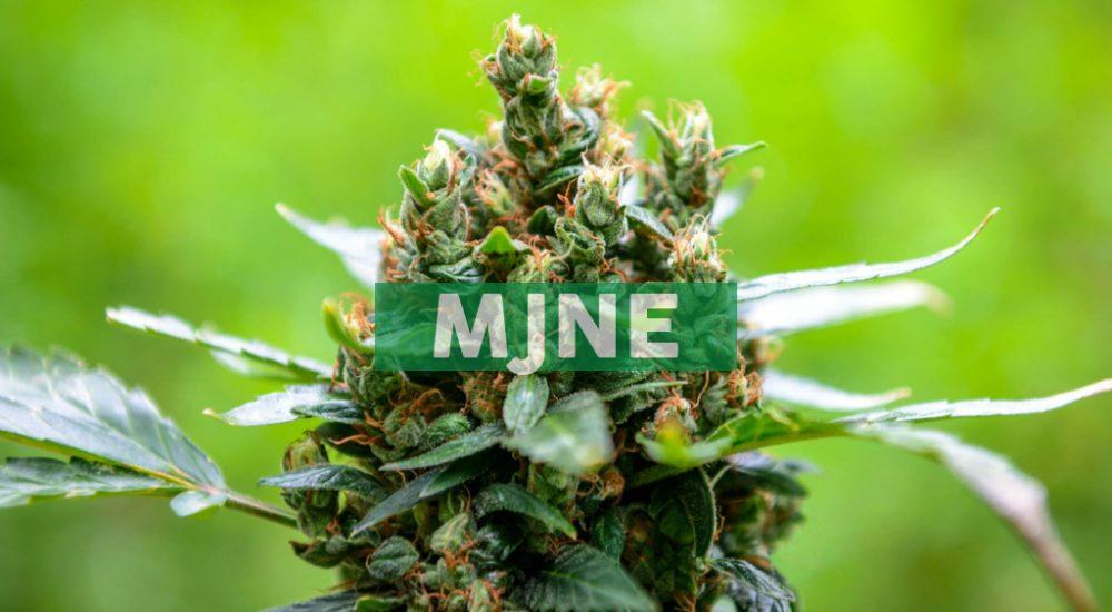 Nevada Dispensaries Offering Marijuana Delivery