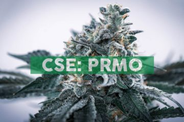 Primo Nutraceuticals Inc. Provides Updates on Company via YouTube Channel