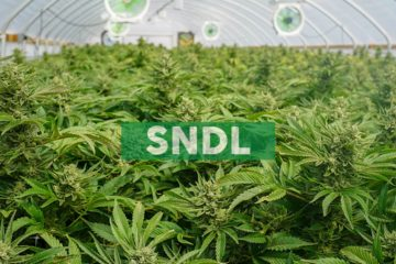 Sundial Growers to Announce Fourth Quarter and Fiscal Full-Year 2019 Financial Results on March 12, 2020