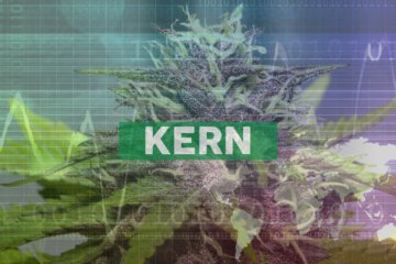 Akerna Flash Report: Medical Cannabis Sales in CO Up 57% During Week of Panic