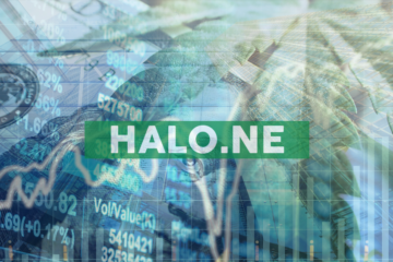 Halo Labs Completes Issuance of Shares to Certain Directors, Employees, and Independent Consultants