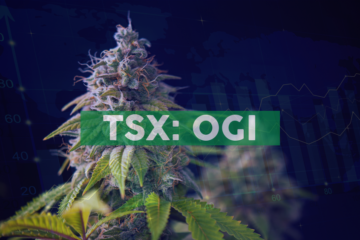 Ideal Potency of Edible Products 5MGs of THC or Less, Organigram Consumer Research Survey Concludes