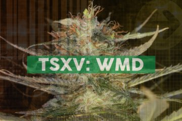 WeedMD Posts Open Letter to Shareholders and Corporate Update from Newly-Appointed CEO