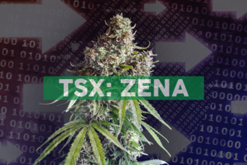 Zenabis Provides Corporate Update