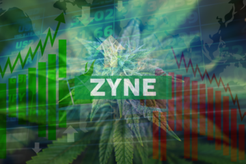 Zynerba Pharmaceuticals Reports Fourth Quarter and Year End 2019 Financial Resultsand Operational Highlights