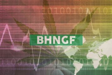 Bhang Announces Delayed Filing of Annual Disclosure Documents