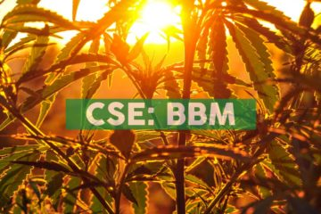 Blueberries Medical Provides Corporate Update