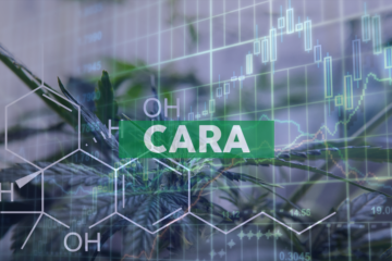 Cara Therapeutics and Vifor Fresenius Medical Care Renal Pharma Announce Positive Results From Global KALM-2 Pivotal Phase 3 Trial of KORSUVATM Injection in Hemodialysis Patients with Pruritus