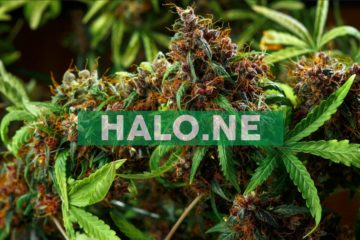 Halo Labs Announces First Sale of Distillate From Superfiltration
