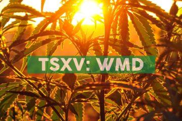 WeedMD Kicks-off Second Season of Outdoor Cannabis Cultivation