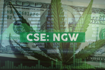 Next Green Wave Opens Online CBD Marketplace with Wide Range of Products