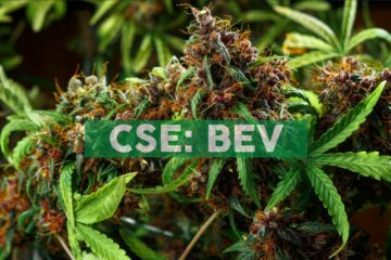 BevCanna To Exclusively License Award-Winning Keef Brands Infused Beverage Lines in Canada