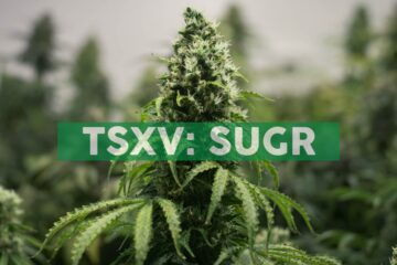 Sugarbud Closes Non-Dilutive Secured $5.0 Million Credit Facility with Connect First Credit Union Ltd.